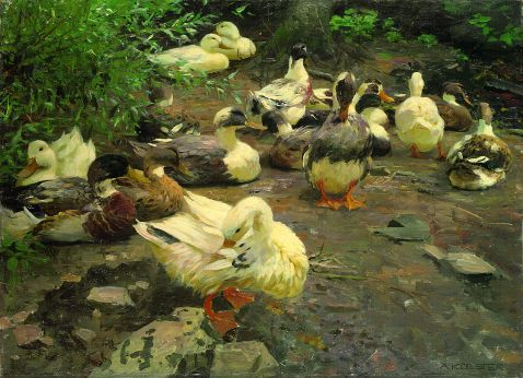Alexander Koester - Enten am Lagerplatz