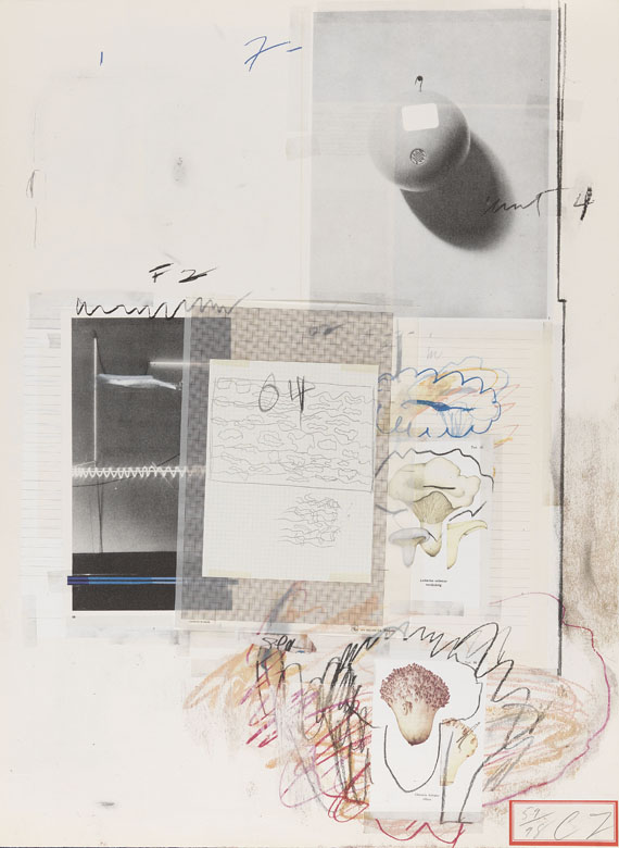 Cy Twombly - Natural History Part I, Mushrooms - Weitere Abbildung