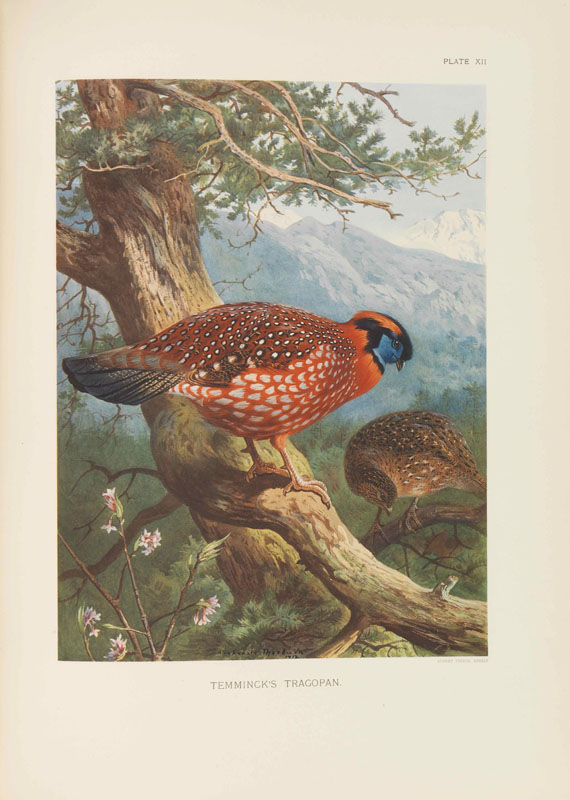 William Beebe - A Monograph of the Pheasants. 4 Bände