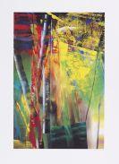 Richter, Gerhard - Farboffset