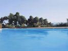 Borowski, Martin - Oil on canvas
