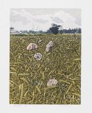 Evernden, Graham - Etching and aquatint in colors