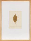 Joseph Beuys - Kirsche