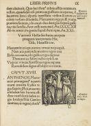 Hieronymus Gebwiler - Epitoma regii