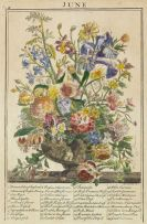 Robert Furber - The Flower-Garden - 12 Monatskupfer