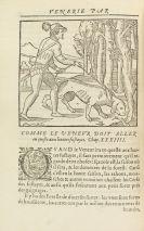 J. DuFouilloux - La venerie