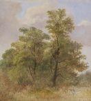 Carl Spitzweg - Baumstudie