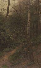 Alexander Koester - Birken am Waldrand