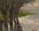 Alexander Koester - Reichenau, Weiden am See, Sonne