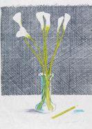 David Hockney - Lillies