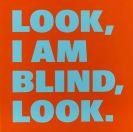 Rémy Zaugg - About Blindness Nr. 18