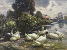 Alexander Koester - Acht Enten am Wasser
