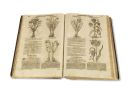 Jacob Theodor Tabernaemontanus - New vollkommentlich Kreuterbuch, 3 Teile in 2 Bänden