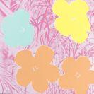 Warhol, Andy - Flower