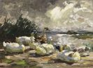 Alexander Koester - Enten am Ufer (schöne Wolkenstimmung)