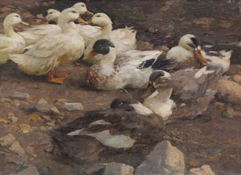 Alexander Koester - Neun Enten am Teichufer
