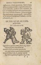 Helius Eobanus Hessus - Sammelband
