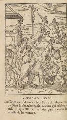 Gabriel de Saconay - Discours des premiers troubles advenus à Lyon