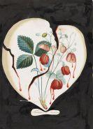 Salvador Dalí - Coeur de fraises