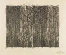 Jasper Johns - Two Flags (Gray)