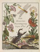 Augustin Johann Rösel von Rosenhof - Insecten-Belustigung. 5 Bände