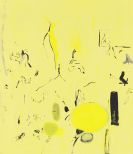 Sue Williams - Problem Areas