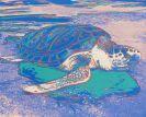 Andy Warhol - Turtle