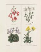 Benjamin Maund - The Botanic Garden