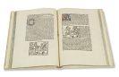 Jacobus de Theramo - Consolatio peccatorum: das Buch Belial genannt