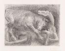 Pablo Picasso - Taureau attaquant un Cheval