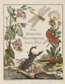 Rösel von Rosenhof, Augustin Johann - Insecten-Belustigung. 5 Bände
