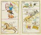 Johann Leonhard Rost - Atlas portatilis coelestis