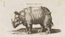 Johann Mathias Decker - Naturgeschichte. Vierfüßige Tilere Tle.1-6 und Vögel Tle 1-4. Zus. 3 Bände